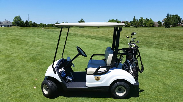 Where to buy golf cart bag