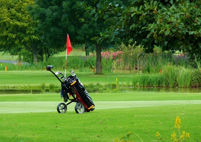 What are different Golf bags for kids