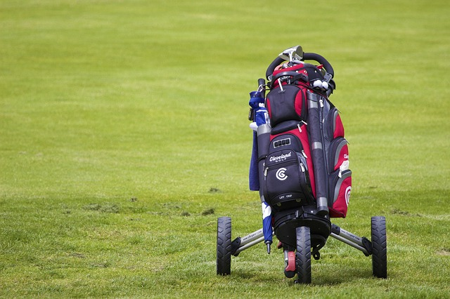 How to convert golf push cart to electric